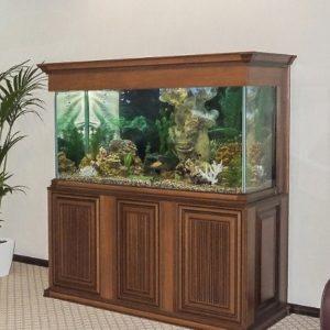 Облицовка аквариумов